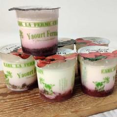 Yaourt fermier fruits rouges X6